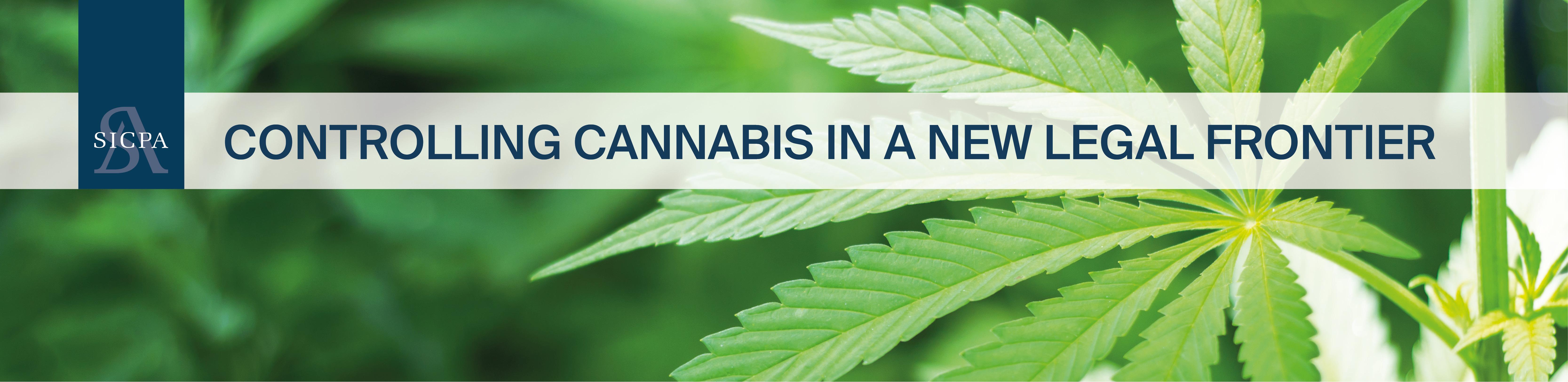 Banner_Cannabis2.jpg